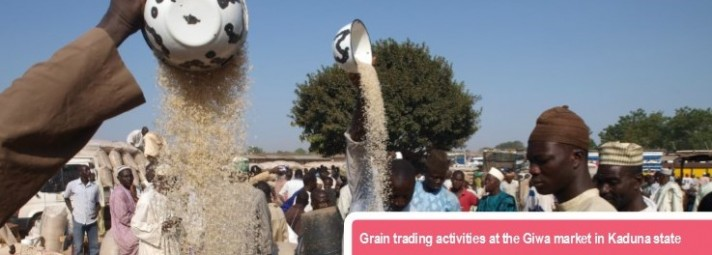 Grain trading activities at Giwa market in Kaduna state