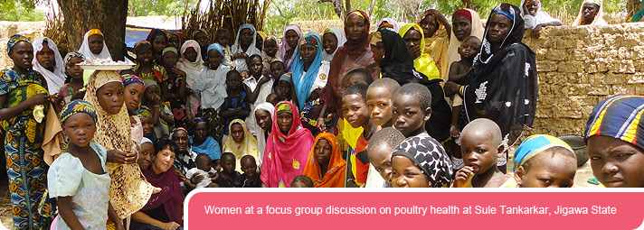 "Women at a focus group discussion on poultry health at Sule Tankarkar, Jigawa State"" title=""Women at a focus group discussion on poultry health at Sule Tankarkar, Jigawa State"