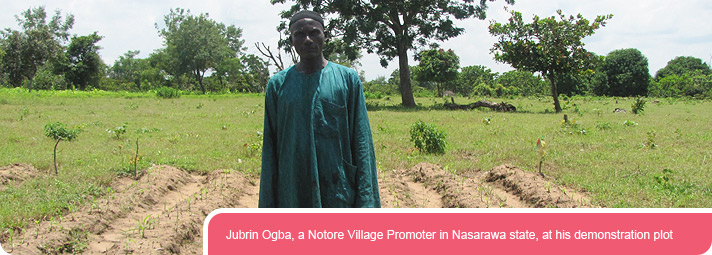 Jubrin Ogba, a Notore Village Promoter in Nasarawa state, at his demonstration plot