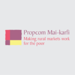 Propcom Mai-karfi Participates in Global WEE Forum
