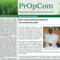 Agricultural Policy Innovation: Kano State Government Endorses Rice Investment Policy