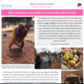 Shea nut pickers: on market access for their shea kernels